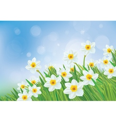 flowers sky background vector image
