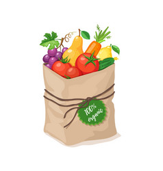grocery paper bag vector image