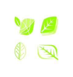 leaf logo design template set vector image