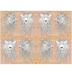 Leopard texture pattern with head vector