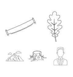 Oak leaf saw stump mountainforest set vector
