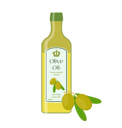 olive oilbottle of natural oilbranch with olives vector image