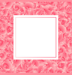 Pink carnation flower banner card vector