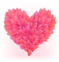 Beautiful heart made from pink petals vector image