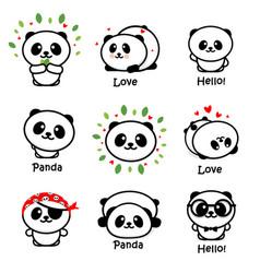 cute panda asian bear vector image vector image