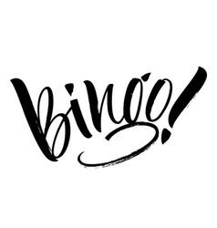 bingo lettering vector image
