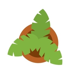 Bush home green plant in pot culture top view vector