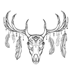 contour a deer skull with antlers and feathers vector image