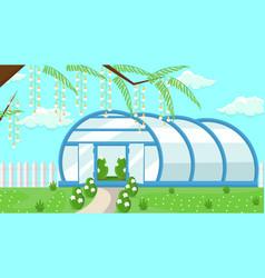 Greenhouse in garden flat vector