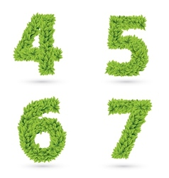 Numbers of green leaves collection vector