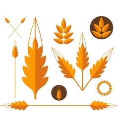 Wheat Design elements vector image