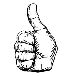 thumbs-up vector image vector image