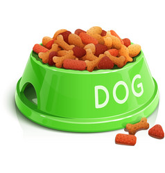 bowl with dog feed vector image vector image