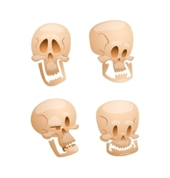 Skull face isolated on white vector image