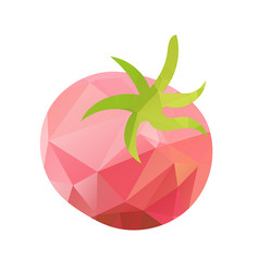 abstract tomato polygonal vector image