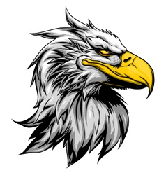 Angry eagle head vector