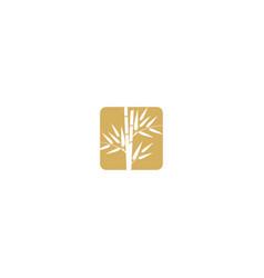 bamboo plant icon logo vector image