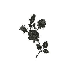 black silhouette roses and leaves rose tattoo vector image
