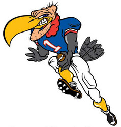 buzzard football logo mascot vector image