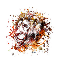 color lion head vector image