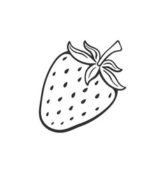 doodle sweet strawberry vector image