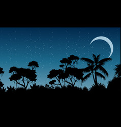 Landscape of rain forest at the night vector