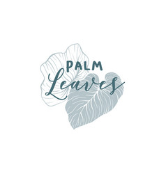 palm leaves hand drawn logo template vector image