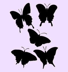 pretty butterfly silhouette vector image