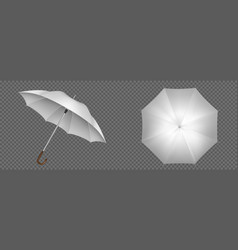 realistic white umbrella front and top view vector image