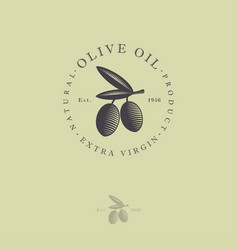 Ripe olives oil leaves with letter logo engraving vector