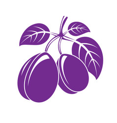 two purple simple plums with leaves ripe sweet vector image