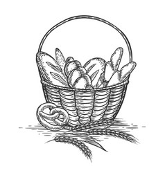 sketch of wheat bakery basket vector image vector image