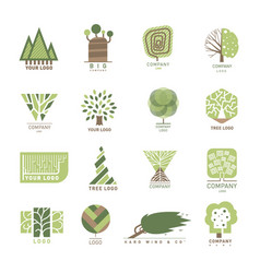 tree wood oak design element badge modern vector image