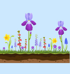 artoon field flowers green grass and earth layers vector image