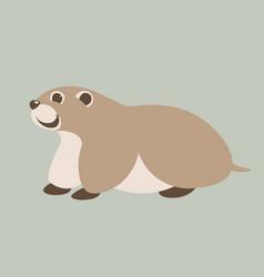 cartoon marmot flat style vector image