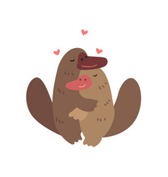 Couple of platypuses in love embracing each other vector