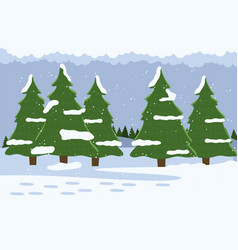 fir trees with snowy tops winter in forest snow vector image