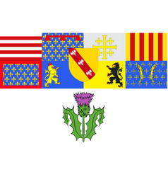 Flag of nancy in meurthe-et-moselle of grand est vector