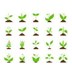 grass simple flat color icons set vector image