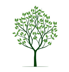 shape green tree outline plant vector image