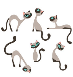 Siamese elegant cats design set vector