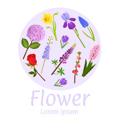 floral flower card design vector image