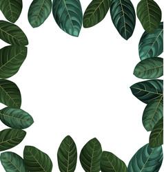Foliage copy space border vector
