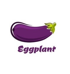 Fresh dark violet eggplant vegetable vector
