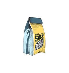 Paper bag cooking himalayan salt hand drawn vector