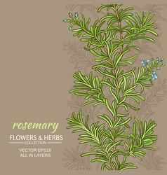 Rosemary background vector
