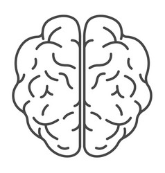 top view brain icon outline style vector image