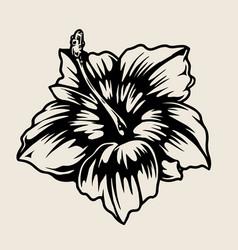 Vintage template blooming hibiscus flower vector