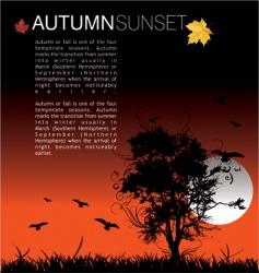 Autumn sunset vector