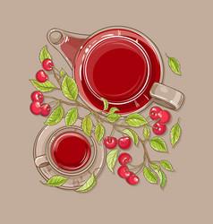 cherry tea vector image